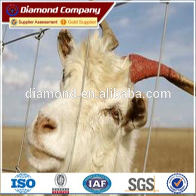 cow fence/farm gate/ranch fence/galvanized ranch fence/high quality cattle fence with our own factory