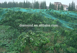 Selling anti-bird mesh/colored anti-bird screen netting/plastic screen/screen/fabric