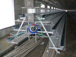 factory direct saling high quality bird cage /laying hen cage/Chicken Farm/cage for chicken
