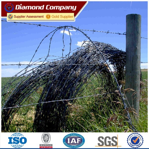 field barbed wire fence and dobule twsited barbed wire fence