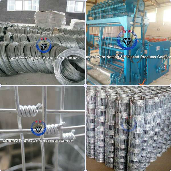 Producing process of the field fence wire 8ft