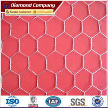 galvanized hexagonal wire mesh/plastic hexagonal wire mesh
