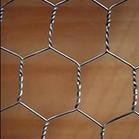 low price hexagonal decorative chicken wire mesh/copper chicken wire mesh special for Africa