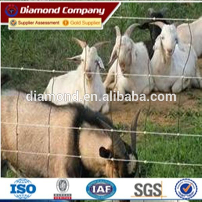 Hinge joint Fence,metal cattle fence,cattle fencing panels/cattle electric fence,electric fence energiser,electric fence