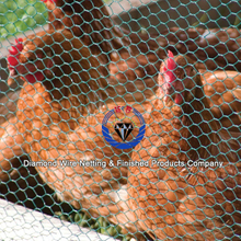 Stainless steel bird cage wire mesh price