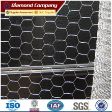 plant protection hexagonal wire mesh