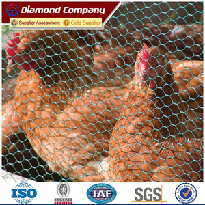 3/4 inch hexagonal wire mesh(Galvanized&PVC Coated)